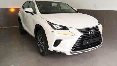 dau xe lexus nx300 2021 2022 muaxegiatot vn 2 373x210 - Đánh giá xe Lexus NX 300 2021 - Mẫu xe thể thao thành thị cao cấp